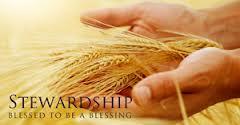 stewardship hands